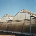 Земеделска мрежа за защита от доматен молец