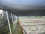 Мрежи за сянка за оранжерии