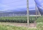 Мрежа за защита от градушка за големи земеделски площи