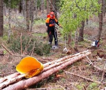 Лебедки бензинови за дърводобив