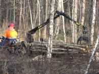 Дърводобиваща и дървообработваща техника
