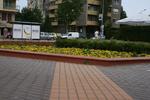 озеленяване на обществени градини и обществени пространства