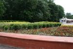 професионално озеленяване на обществени пространства