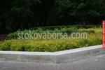 озеленяване на паркови пространства по поръчка