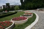 професионално озеленяване на паркови пространства
