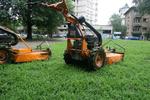 Поддръжка на зелени площи по поръчка