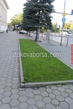 озеленяване на обществени места и обществени пространства